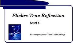 Flickrs True Reflection - Level 6