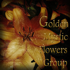golden_ mystic_flowers