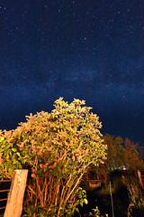 Stargazing II