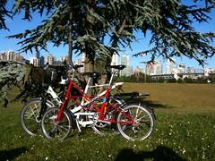 photo.JPG (teig) Tags: cameraphone vancouver biking moulton