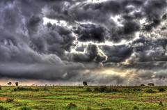 A Storm's a Brewin (AJ Brustein) Tags: park sky storm field weather clouds brewing canon aj scary kenya ominous nairobi twist safari national swirl tornado hdr brustein 50d