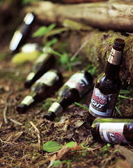 (hiding in shadows) Tags: nature beer river log woods bottles earth litter 365 day31 coorslight 50mmf18 rebelxti