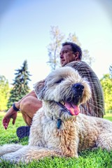 BFF <3 (Fred in Montreal) Tags: park dog sun love dogs grass riley montreal terrier russ booboo wheaton