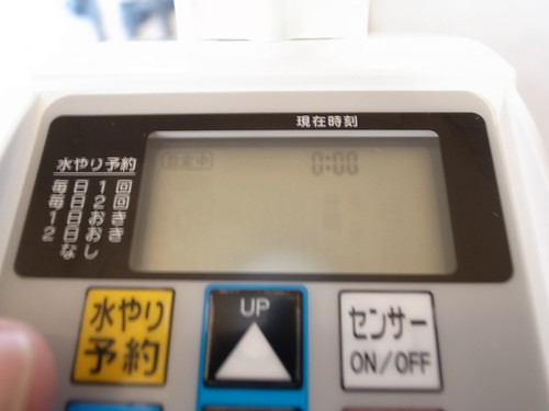 R9100119.JPG