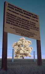 Under Threat (zachstern) Tags: wallpaper tree sign landscape ir progress infrared sprawl 木 风景 development zone hopkins 树 rezoning zoning johnshopkins 壁纸 ツリー 樹 mytree maxmaxcom पेड़ वृक्ष belward 樹樹 xnitelumixlx3 柅 柂