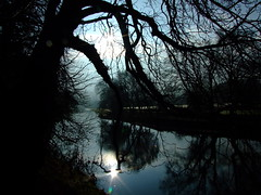 RIVER OF SHADOWS. (the water watcher 05.) Tags: morning blue trees light shadow sun reflection tree nature pool silhouette clouds sunrise river stars dawn star scotland spring stream shadows branches bluesky twinkle reflected burn valley reflective sunrays lightandshadow borders sunup waterpool sunbeams daybreak sunreflection waterreflection helios morningstar treereflection waterscape hawick whiteclouds teviot scottishborders roxburghshire riverscape teviotdale riverteviot wiltonlodgepark treesilhouettes riverpool spetch fujifinepixs6500fd startwinkle riverofshadows thespetch teviotvalley teviotwater thespetchmanspool twinkilingstar