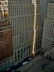 New York Shadows.