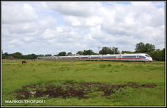 Zevenaar, 15-07-2011 (Mark Rail) Tags: ice ns hispeed zevenaar 4603 4611 br406 nshispeed ice123