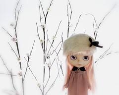 Twig & Thorn