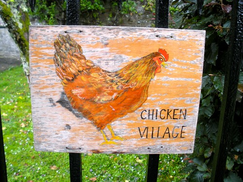chicken village!!!