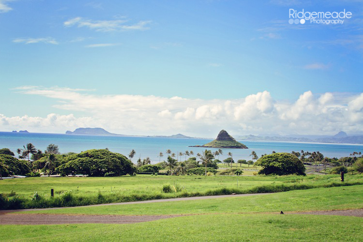 Kualoa Ranch #19