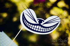 Alice in Wonderland- Cheshire Cat Prop on a Stick (windrosie) Tags: party white paper shower tea queen supplies wonderland without props hatter partyparty the partykids shower photo party cat hearts medrink bridal alice wonderland birthday partytea stick mealice catthe ideas mad partygarden grin aliceinwonderlandpartyideas mustache photoboothsupplies windrosieonetsy suppliesmad supplieseat suppliestop hatwhimsical partycheshire rabbitlewis carrolunbirthday