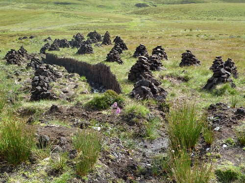 Peat Cuttings, Skye