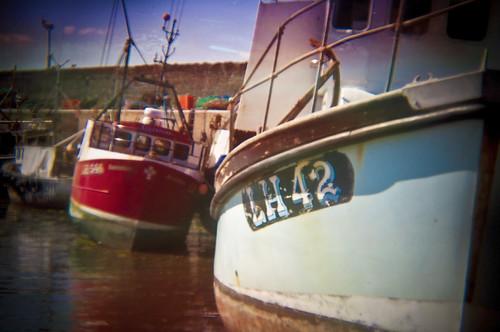 Holgafied Boats