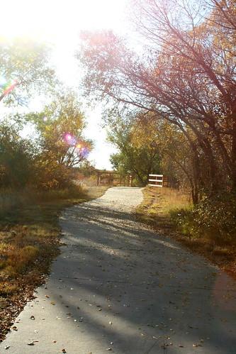Sunny Path by Eskimo Kiss Photography