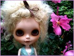 Goldie, Amelia's Friend...