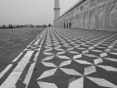 Perspective (Taj Mahal)