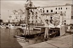 Pescherecci nel porto di Molfetta, Puglia (emilius da atlantide) Tags: sea costa coast italia mare puglia adriatic adriatico paesi borghi