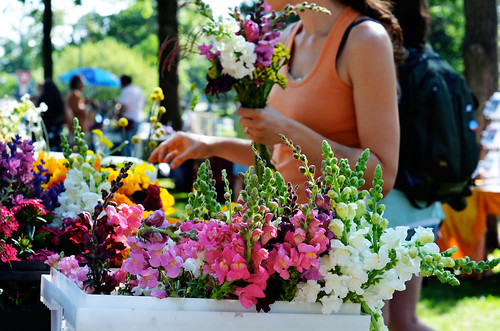 market flowers by kristin~mainemomma
