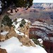 "Grand Canyon • <a style=""font-size:0.8em;"" href=""http://www.flickr.com/photos/26088968@N02/5996344964/"" target=""_blank"">View on Flickr</a>"