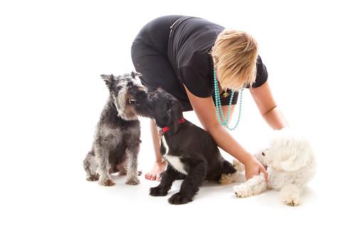 Day 211 - Puppy Handling
