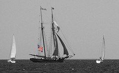 Pride of Baltimore II (smiles7) Tags: red lake water boats blackwhite nikon flag lakemichigan sailboats charlevoix weeklyphotoassignment weekly422011