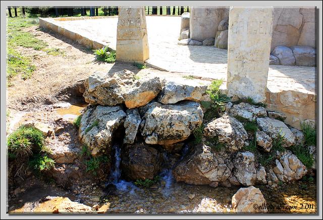 Nacimiento del río Tajo 5