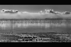the delta (Wim Koopman) Tags: light sky bw white black holland water netherlands dutch clouds canon reflections river photography photo bravo waves stock nederland delta powershot stockphoto s90 stockphotography s100 tholen poortvliet estuarium oesterdam wpk s95