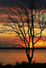 Another Winter Sunset (Janice O'Donnell) Tags: sunset reflection water silhouette clouds canon eos 350d australia queensland rebelxt bribieisland newvision pumicestonepassage sylvanesplanade blinkagain bestofblinkwinners blinkagainsuperstars peregrino27newvision