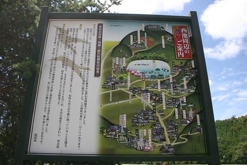 Tane map