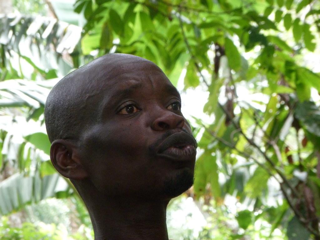Planteur de cacao Togo