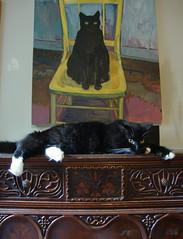 Batman on the dresser (rootcrop54) Tags: cat chat gato batman dresser 猫 macska gatto kot kočka kedi polydactyl chatte katt kissa köttur mačka bigfeet kucing кошка 고양이 katė γάτα maček kaķis supershot gorbe pisică