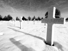 So many of them died for us (Marc Gommans) Tags: bw snow cemetery zwartwit sneeuw grain nederland thenetherlands american ww2 soldiers olympuspen limburg uwa battlefields margraten zd mmf2 penography marcgommans fotoclubvenray victems zuiko918mm