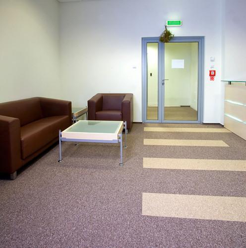 Koydol Carpet Tile: Go-Anywhere Collection