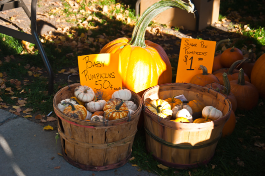 farmers market oct 1_1