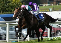 Eclipse Stakes 2011 (cgerry77) Tags: eclipse you think workforce so