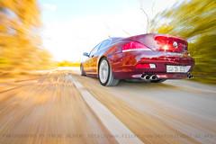 (Talal Al-Mtn) Tags: tree green cars yellow automobile shot automotive rig bm bmw kuwait autos m6 m5 v10  kuwaitcity q8 bmwm6 hamman kwt bmwm5    bmwv8 rigshot kuwaitcars lm10 bmwv10   talalalmtnphotography photographybytalalalmtn bmw650ci bmw640 automotiveinkuwait bmw650ic bmw6serise bmwrigshot