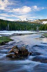 Reading Peak over Hat Lake (Eric Leslie) Tags: ca usa snow ice sunrise landscape unitedstates meadow stump hatcreek lassennationalforest lassennationalpark nohdr readingpeak hatlake