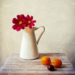 Summer Still Life (MargoLuc) Tags: flowers stilllife cherry july jug apricot textured ciliegia albicocche platinumheartaward tatot magicunicornverybest magicunicornmasterpiece