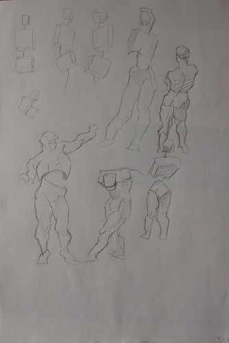 "Spartan Camp #189 - 50 gestures + Optional ""Free Choice Muscle Study"""