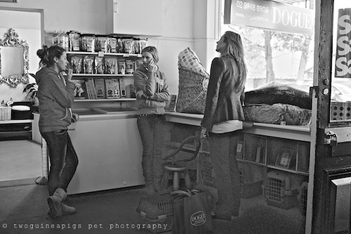 The owners, twoguineapigs pet photography at Dogue's Winter Sale 2011 in Manly