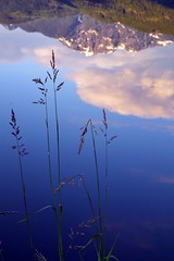 reflections (Sasha Pehar) Tags: mountains clouds reflections reeds unguessed