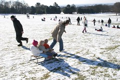 Sledging at Camphill (Liverpool Parks and Greenspaces) Tags: park liverpool camphill wooltonwoods greenflagpark parksandgreenspaces wwwliverpoolgovukparks