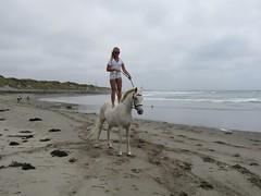 IMG_3078 (heartsdylann) Tags: girls horses beach ponies equestrian paints arabians dressage