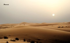 Desert SunSet (.ღ♫°Qanas°♫ღ.) Tags: light sunset sky brown sun love nature colors set photography evening nikon dubai mood desert united uae scene calm emirates arab romantic quite hdr qanas rashed texures d3000 alzaabi