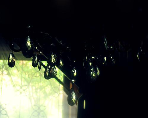 (197/365) Sparkle