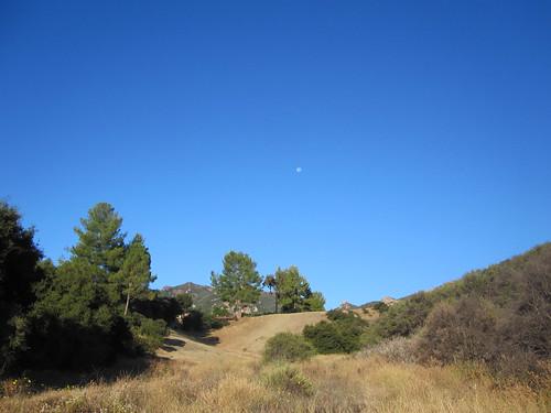 blue sky and moon set