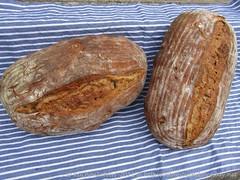 Sourdough Rye without Raisins but Walnuts (1)