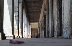 Street (puntxote) Tags: street calle nikon soledad viejo suelo piedra d90 5photosaday 4tografie