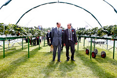 HRH Duke of Kent at wfminKent polytunnel